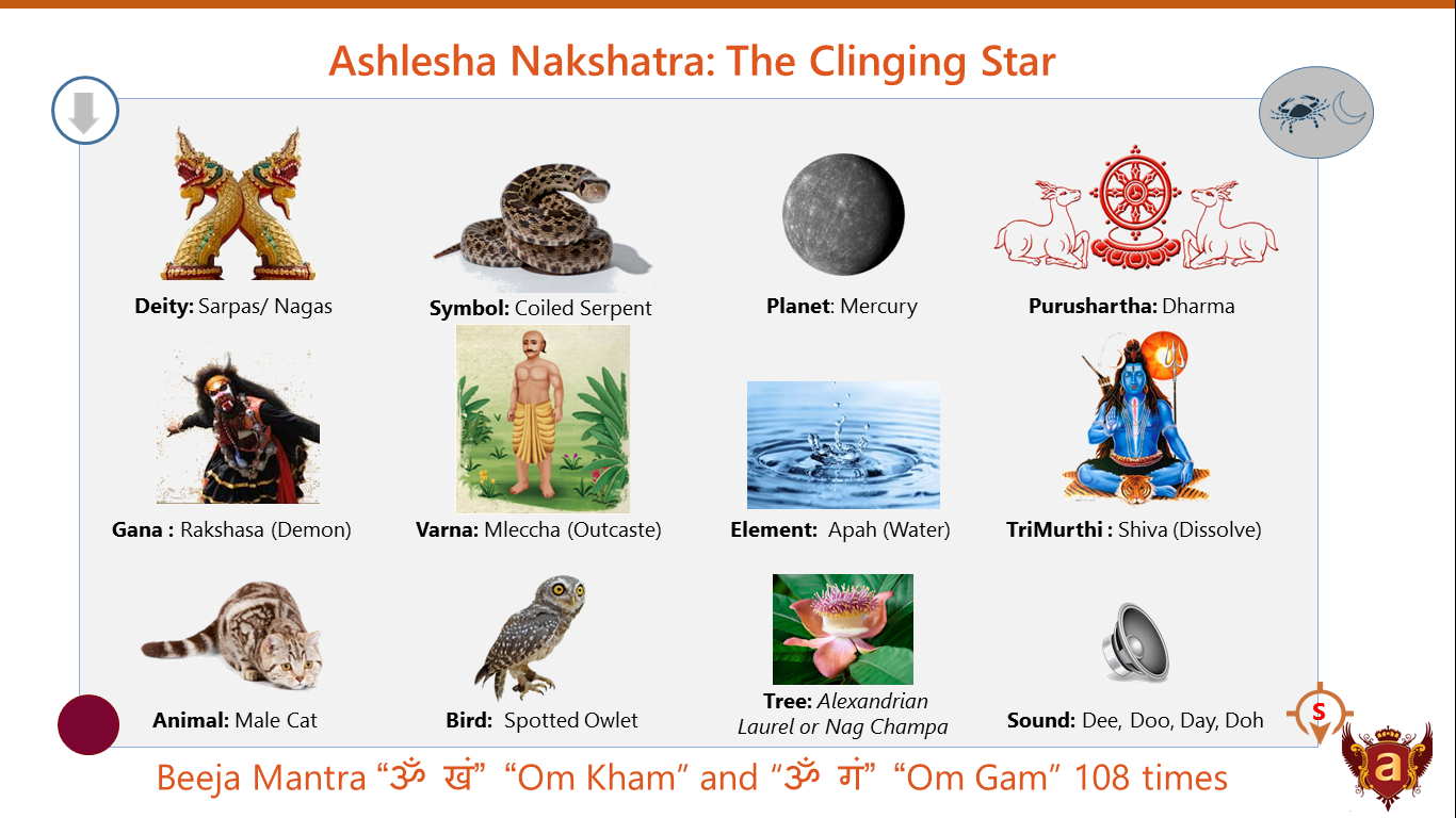 Nakshatra 9 - Ashlesha by Dr. Arjun Pai