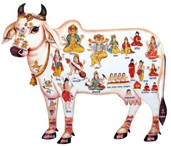 Махабхарата - Небесная корова Камадхену
