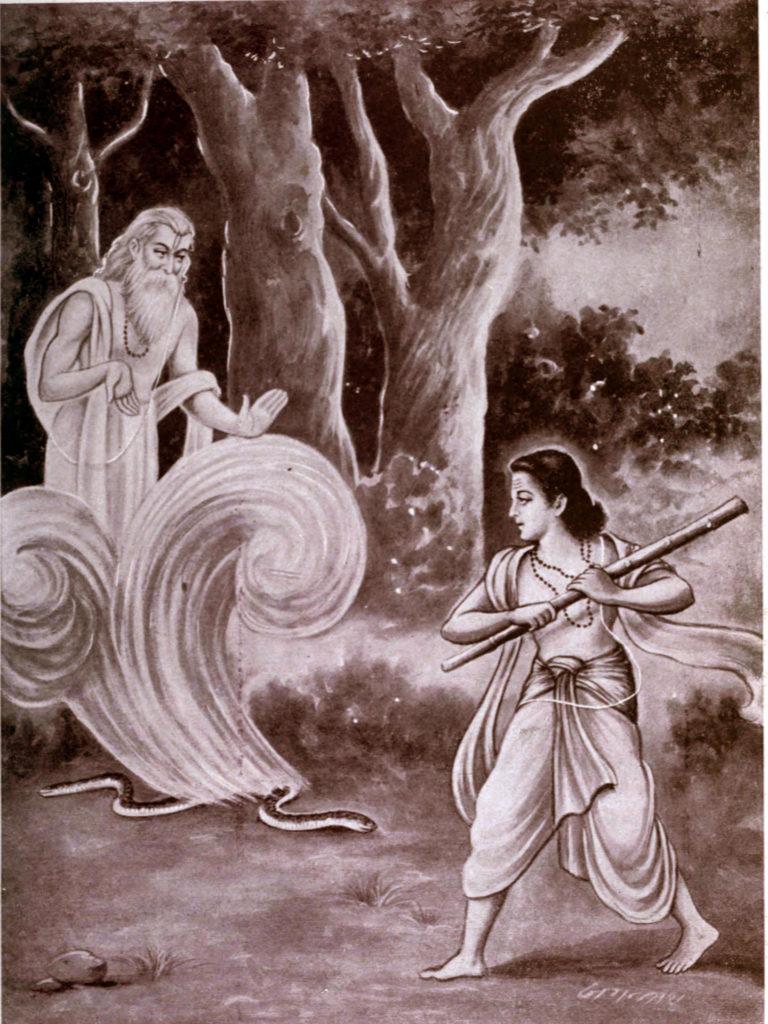 Махабхарата - Увидев Руру, Сахасрапат избавился от проклятия