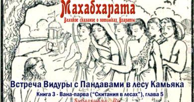 Махабхарата Вана-парва глава 5 Встреча Видуры с Пандавами в Камьяке