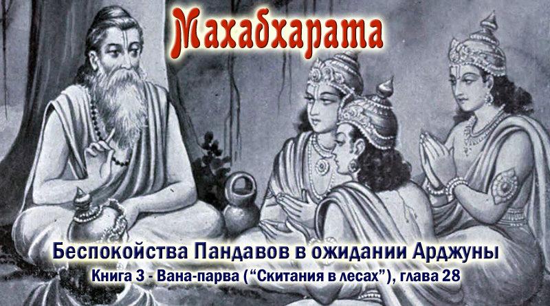 Махабхарата-Ванапарва-глава-028 - Беспокойства Пандавов в ожидании Арджуны