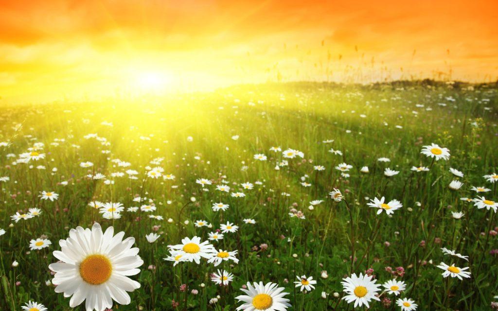 влияние Солнца
