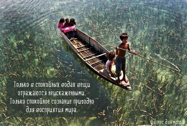 спокойный ум подобен спокойной поверхности воды