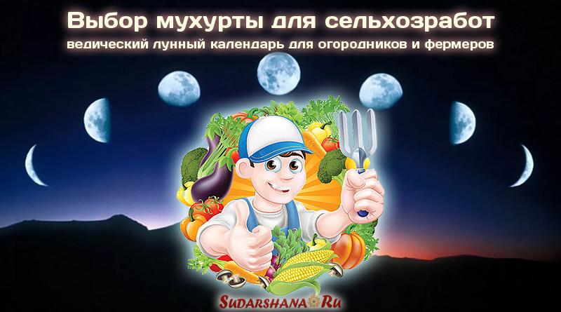 Мухурта для сельхозработ