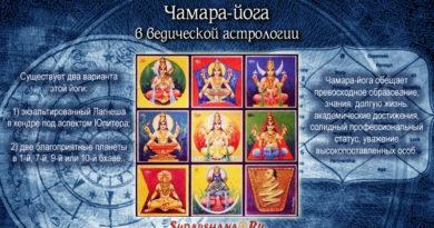 Чамара-йога