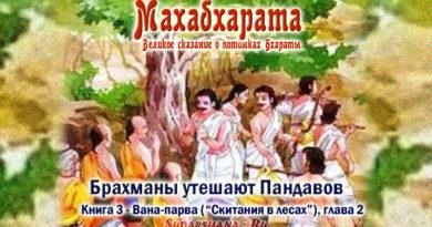 Брахманы утешают Пандавов